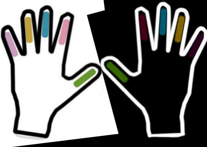 cinque movimenti cinque dita